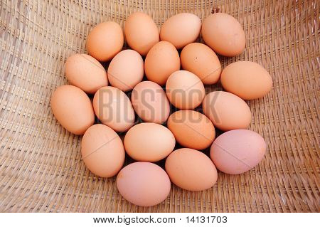 Egg Group