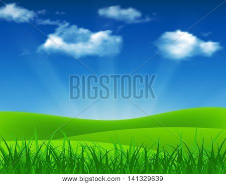 Nature summer background with green grass and blue sky. Vector illustration