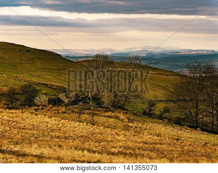 Distant view of snow covered Cader Idris at sunset from Waun Maenllwyd in the Cambrian Hills above Llandewi Brefi Wales with ruined farmhouse in the foreground. Wales, UK.