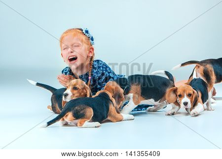 The happy girl and many beagle puppies on gray background