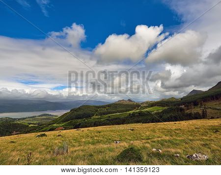 Pine covered foothills of Cader Idris overlooking the Mawddach estuary near Arthog with the summit of Craig-las on the right or due north east. Wales, UK.