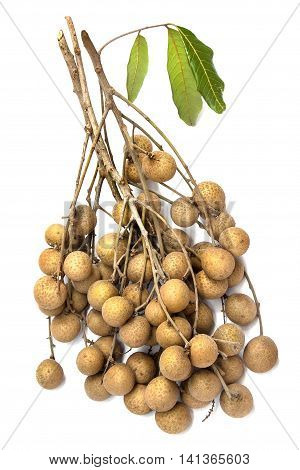 fresh longan closeup on the white background