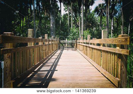 Elevated wooden walkway bridge over swamps in heavy wooded area