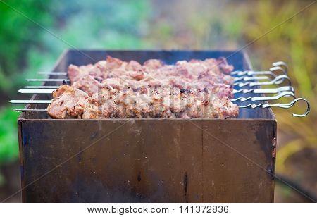 Pork Shish kebab on Fire. Appetizing fresh meat shish kebab prepared on a grill wood coal outdoors.