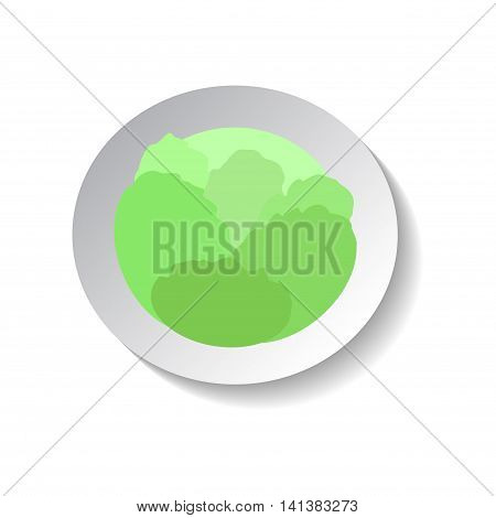 Cabbage vector icon in flat style with shadow. Vegetable pictogram. Simple cabbage illustration on white. Cabbage isolated. Cabbage image for background patch web design. Healthy vegetarian food.