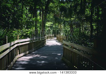 Elevated wooden walkway over swamps in heavy wooded area
