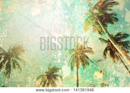 Tropical Palm Tree Sun Light Vintage Shabby