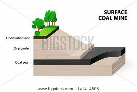 surface coal mine. When coal seams are near the surface it may be economical to extract the coal using open cut