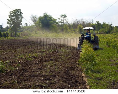 Soil preparation and clearing eucalyptus tree by tractor
