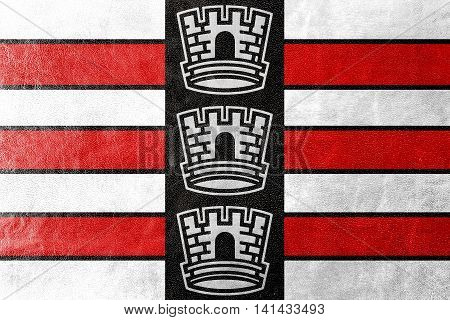 Flag Of Joao Pessoa, Paraiba, Brazil, Painted On Leather Texture