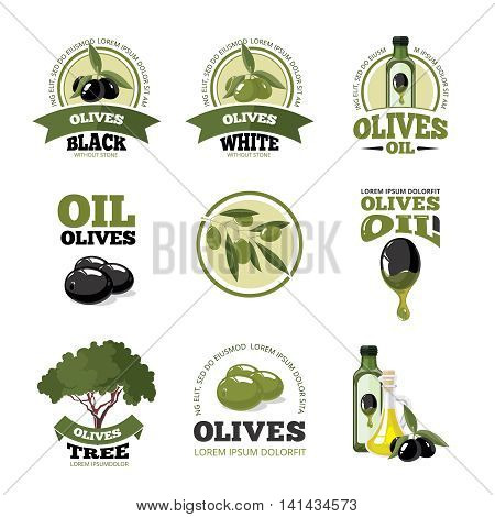 vector big labels set of Olives, tree, oil botles and leaf isolated on four diferent color backgrounds. Pictures for your personal design project.