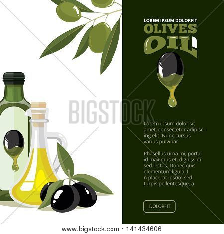 vector illustration of Olives, tree, oil botles and leaf isolated on light background. Template pictures for cover design, or your personal art project. Design with place for your text