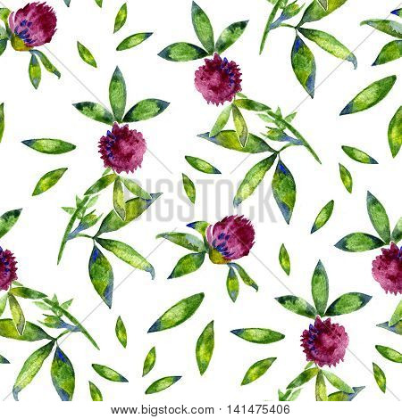 Watercolor Trifolium clover flower texture seamlees pattern