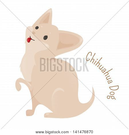 Chihuahua isolated on white background. The smallest breed of dog recognized by some kennel clubs. Smooth and Long Coats. Part of series of cartoon puppy species. Child fun pattern icon. Vector