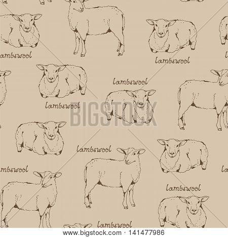 Lambswool beige pattern seamless background with sheep and handwritten lettering farm animal illustration fabric wool texture cloven-hoofed livestock hand drawn sketch