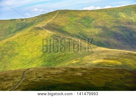 Road Through A Meadow On Hillside