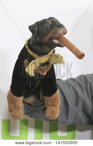 BEVERLY HILLS - AUG 5: Triumph the Insult Comic Dog at the HULU Summer Press Tour 2016 at the Beverly Hills Hilton Hotel on August 5, 2016 in Beverly Hills, California