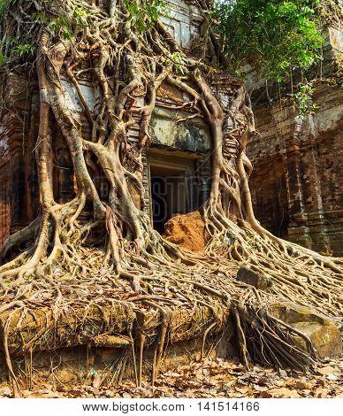 Temple Koh Ke, Cambodia