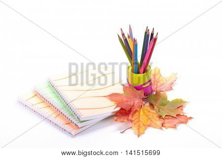 Writing-books, multi-coloured pencils in a cup and autumn leaves on a white background. Concept for Back to school.