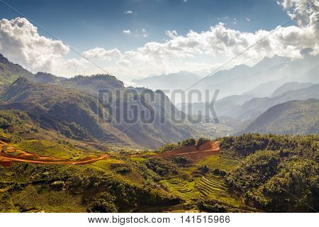 Rice Fields On Terraced Lao Cai Province Northern Vietnam