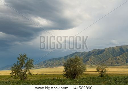 Trees Mountains And Steppe Storm Clouds