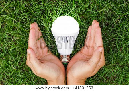 Hand holding a turned on LED light bulb / Green energy concept / Using environmentally friendly appliances concept