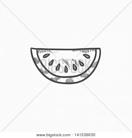Melon  vector sketch icon isolated on background. Hand drawn Melon  icon. Melon  sketch icon for infographic, website or app.