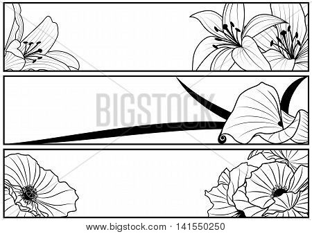 set of vector floral banners with lily and poppy in black and white