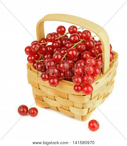 Red currants in a wooden basket on a white background
