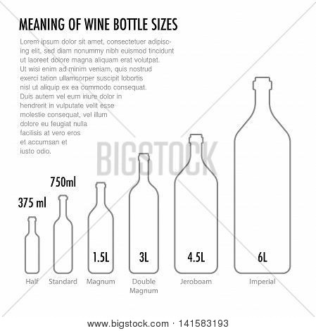 Meaning of wine bottle size. Typography poster in a modern flat style for wine tasting information poster for wineries or wine shop