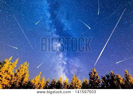 A view of the stars of the Milky Way with a pine trees forest in the foreground. Falling stars. Perseid Meteor Shower in 2016.