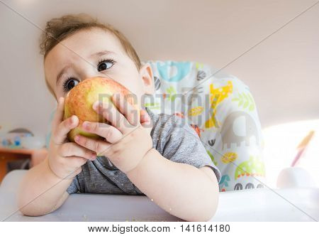 small happy child sitting in a chair and eats Apple from whose face is marred in baby food the concept of family child health feed the baby eat at home