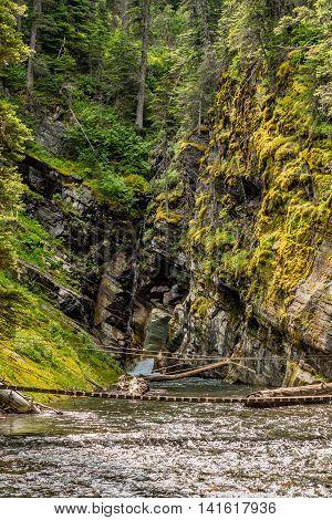 Swinging Bridge Across Moutain Creek in ravine