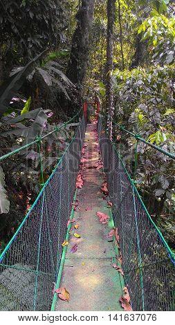 Suspension bridge lead gunung gede west java