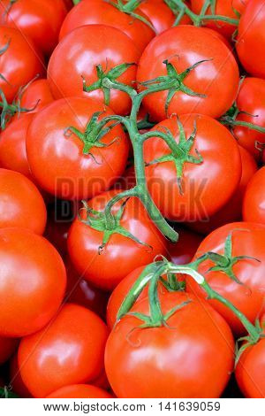 Beautiful red vine tomatoes ready to eat