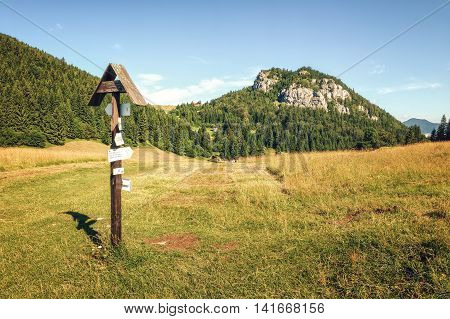 Meadows near Malino Brdo in Great Fatra (Velka Fatra) National Park Slovakia