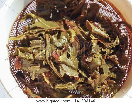 LONDON UK - CIRCA AUGUST 2016: Chinese gunpowder green tea in a colander