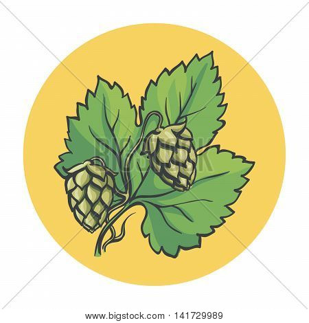 hop branch. colored illustration on a yellow background