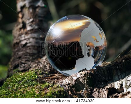 Transparent ball in the green forest. In the field of reflected sunset, sky, trees. Glass - a material, concepts and themes, time of day, environment, ecology, peace, raznovye time zones