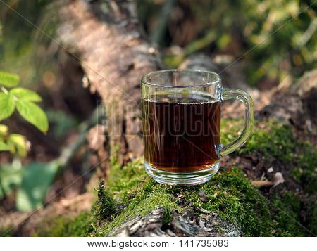 Tea in a cup. Forest moss wood snag