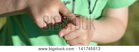 Close up on hands of unidentifiable child in green shirt holding red ladybug as it crawls on a finger.