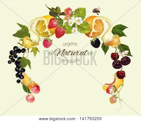 Vector berry and fruit round wreath frame. Design for tea, ice cream, jam, natural cosmetics, candy and bakery with fruit filling, health care products, perfume. Can be used as logo design