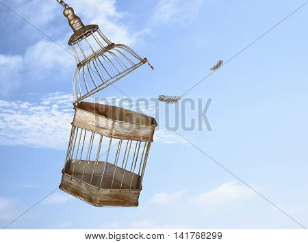 Escaping from the cage. Concept for freedom