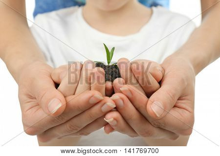 Child and adult holding soil and plant, close up