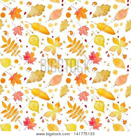 Seamless Pattern With Autumn Leaves And Splash. Watercolor Painting.