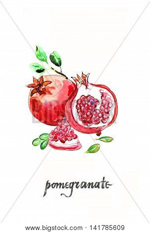 Watercolor hand drawn pomegranates with leaves - Illustration