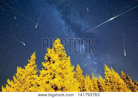 A view of the stars of the Milky Way with a pine trees forest in the foreground. Night sky nature summer landscape. Meteor Shower. Falling stars. Comets. Perseid Meteor Shower in 2016. poster