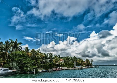 Luxury resort with tropical palm trees on a sunny day perfect for lifestyle and travel blogs
