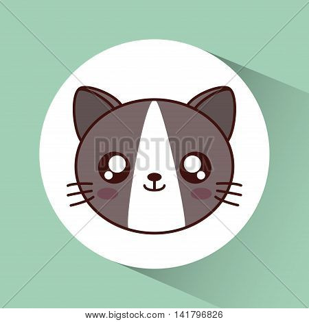 Cute animal design represented by kawaii cat icon over circle. Colorfull and flat illustration.