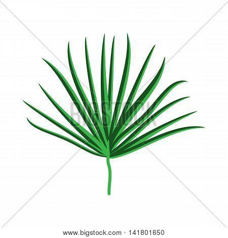 Green Palm Leaf on White Background. Vector Illustration. EPS10